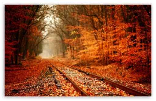 Autumn Railway HD wallpaper for Standard 4:3 5:4 Fullscreen UXGA XGA SVGA QSXGA SXGA ; Wide 16:10 5:3 Widescreen WHXGA WQXGA WUXGA WXGA WGA ; HD 16:9 High Definition WQHD QWXGA 1080p 900p 720p QHD nHD ; Other 3:2 DVGA HVGA HQVGA devices ( Apple PowerBook G4 iPhone 4 3G 3GS iPod Touch ) ; Mobile VGA WVGA iPhone iPad PSP Phone - VGA QVGA Smartphone ( PocketPC GPS iPod Zune BlackBerry HTC Samsung LG Nokia Eten Asus ) WVGA WQVGA Smartphone ( HTC Samsung Sony Ericsson LG Vertu MIO ) HVGA Smartphone ( Apple iPhone iPod BlackBerry HTC Samsung Nokia ) Sony PSP Zune HD Zen ; Tablet 2 ;