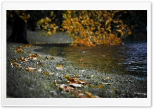 Autumn River Bank HD Wide Wallpaper for Widescreen