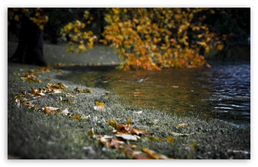 Autumn River Bank HD wallpaper for Wide 16:10 5:3 Widescreen WHXGA WQXGA WUXGA WXGA WGA ; HD 16:9 High Definition WQHD QWXGA 1080p 900p 720p QHD nHD ; Standard 4:3 5:4 3:2 Fullscreen UXGA XGA SVGA QSXGA SXGA DVGA HVGA HQVGA devices ( Apple PowerBook G4 iPhone 4 3G 3GS iPod Touch ) ; Tablet 1:1 ; iPad 1/2/Mini ; Mobile 4:3 5:3 3:2 16:9 5:4 - UXGA XGA SVGA WGA DVGA HVGA HQVGA devices ( Apple PowerBook G4 iPhone 4 3G 3GS iPod Touch ) WQHD QWXGA 1080p 900p 720p QHD nHD QSXGA SXGA ;
