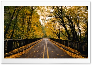Autumn Road HD Wide Wallpaper for Widescreen