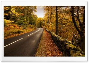 Autumn Road HD Wide Wallpaper for 4K UHD Widescreen desktop & smartphone