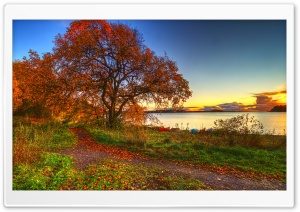 Autumn Scenery HD Wide Wallpaper for 4K UHD Widescreen desktop & smartphone