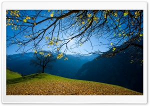 Autumn, Schachental, Switzerland HD Wide Wallpaper for Widescreen