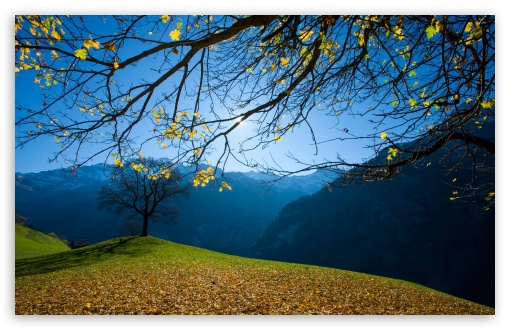Autumn, Schachental, Switzerland HD wallpaper for Wide 16:10 5:3 Widescreen WHXGA WQXGA WUXGA WXGA WGA ; HD 16:9 High Definition WQHD QWXGA 1080p 900p 720p QHD nHD ; Standard 4:3 5:4 3:2 Fullscreen UXGA XGA SVGA QSXGA SXGA DVGA HVGA HQVGA devices ( Apple PowerBook G4 iPhone 4 3G 3GS iPod Touch ) ; Tablet 1:1 ; iPad 1/2/Mini ; Mobile 4:3 5:3 3:2 16:9 5:4 - UXGA XGA SVGA WGA DVGA HVGA HQVGA devices ( Apple PowerBook G4 iPhone 4 3G 3GS iPod Touch ) WQHD QWXGA 1080p 900p 720p QHD nHD QSXGA SXGA ;