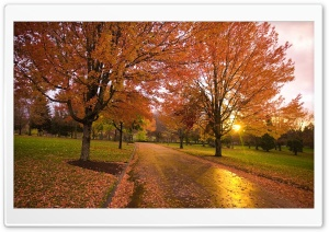 Autumn Sunset, Happy Valley, Oregon HD Wide Wallpaper for Widescreen