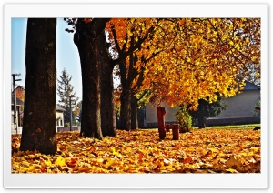 Autumn Time HD Wide Wallpaper for Widescreen