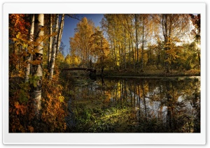 Autumn Trees And Their Reflection In The Water HD Wide Wallpaper for Widescreen