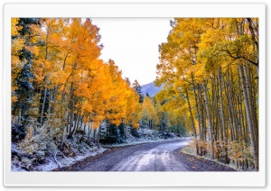 Autumn Winter HD Wide Wallpaper for Widescreen