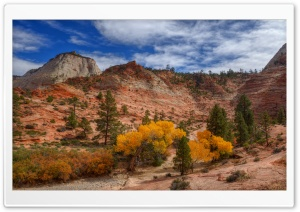 Autumn, Zion National Park, Utah HD Wide Wallpaper for Widescreen