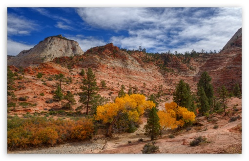 Autumn, Zion National Park, Utah ❤ 4K UHD Wallpaper for Wide 16:10 5:3 Widescreen WHXGA WQXGA WUXGA WXGA WGA ; UltraWide 21:9 24:10 ; 4K UHD 16:9 Ultra High Definition 2160p 1440p 1080p 900p 720p ; UHD 16:9 2160p 1440p 1080p 900p 720p ; Standard 4:3 5:4 3:2 Fullscreen UXGA XGA SVGA QSXGA SXGA DVGA HVGA HQVGA ( Apple PowerBook G4 iPhone 4 3G 3GS iPod Touch ) ; Smartphone 16:9 3:2 5:3 2160p 1440p 1080p 900p 720p DVGA HVGA HQVGA ( Apple PowerBook G4 iPhone 4 3G 3GS iPod Touch ) WGA ; Tablet 1:1 ; iPad 1/2/Mini ; Mobile 4:3 5:3 3:2 16:9 5:4 - UXGA XGA SVGA WGA DVGA HVGA HQVGA ( Apple PowerBook G4 iPhone 4 3G 3GS iPod Touch ) 2160p 1440p 1080p 900p 720p QSXGA SXGA ; Dual 16:10 5:3 16:9 4:3 5:4 3:2 WHXGA WQXGA WUXGA WXGA WGA 2160p 1440p 1080p 900p 720p UXGA XGA SVGA QSXGA SXGA DVGA HVGA HQVGA ( Apple PowerBook G4 iPhone 4 3G 3GS iPod Touch ) ; Triple 16:10 5:3 5:4 3:2 WHXGA WQXGA WUXGA WXGA WGA QSXGA SXGA DVGA HVGA HQVGA ( Apple PowerBook G4 iPhone 4 3G 3GS iPod Touch ) ;