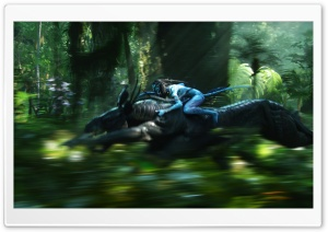 Avatar 3D 2009 Movie Screenshot HD Wide Wallpaper for 4K UHD Widescreen desktop & smartphone