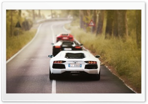 Aventador Lambos HD Wide Wallpaper for Widescreen