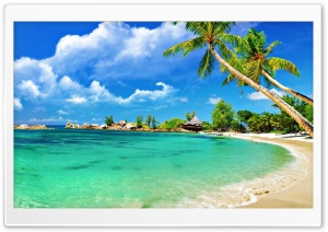 Awesome Tropical Beach HD Wide Wallpaper for Widescreen