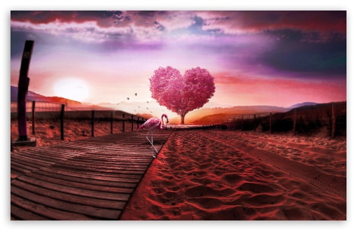 Background Love Heart UltraHD Wallpaper for Wide 16:10 5:3 Widescreen WHXGA WQXGA WUXGA WXGA WGA ; 8K UHD TV 16:9 Ultra High Definition 2160p 1440p 1080p 900p 720p ; Standard 4:3 5:4 3:2 Fullscreen UXGA XGA SVGA QSXGA SXGA DVGA HVGA HQVGA ( Apple PowerBook G4 iPhone 4 3G 3GS iPod Touch ) ; Smartphone 16:9 3:2 5:3 2160p 1440p 1080p 900p 720p DVGA HVGA HQVGA ( Apple PowerBook G4 iPhone 4 3G 3GS iPod Touch ) WGA ; Tablet 1:1 ; iPad 1/2/Mini ; Mobile 4:3 5:3 3:2 16:9 5:4 - UXGA XGA SVGA WGA DVGA HVGA HQVGA ( Apple PowerBook G4 iPhone 4 3G 3GS iPod Touch ) 2160p 1440p 1080p 900p 720p QSXGA SXGA ;