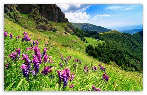 Balkan Mountains - Bulgaria ❤ 4K UHD Wallpaper for Wide 16:10 5:3 Widescreen WHXGA WQXGA WUXGA WXGA WGA ; 4K UHD 16:9 Ultra High Definition 2160p 1440p 1080p 900p 720p ; Standard 4:3 5:4 3:2 Fullscreen UXGA XGA SVGA QSXGA SXGA DVGA HVGA HQVGA ( Apple PowerBook G4 iPhone 4 3G 3GS iPod Touch ) ; Tablet 1:1 ; iPad 1/2/Mini ; Mobile 4:3 5:3 3:2 16:9 5:4 - UXGA XGA SVGA WGA DVGA HVGA HQVGA ( Apple PowerBook G4 iPhone 4 3G 3GS iPod Touch ) 2160p 1440p 1080p 900p 720p QSXGA SXGA ;