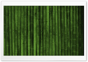 Bamboo Wall HD Wide Wallpaper for Widescreen