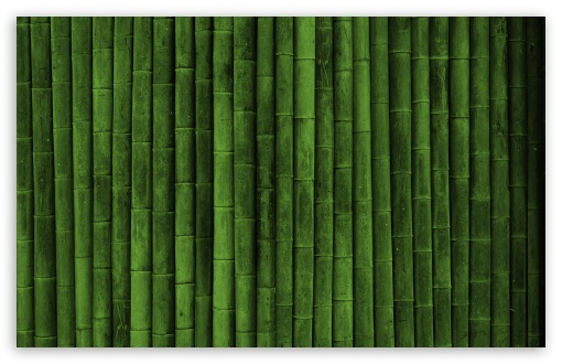 Bamboo Wall HD wallpaper for Standard 4:3 5:4 Fullscreen UXGA XGA SVGA ...