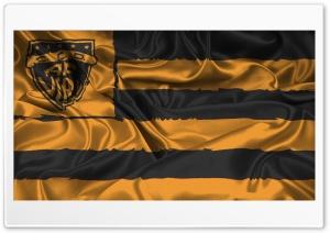 Bandera Aurinegra Fernandez Vial HD Wide Wallpaper for 4K UHD Widescreen desktop & smartphone