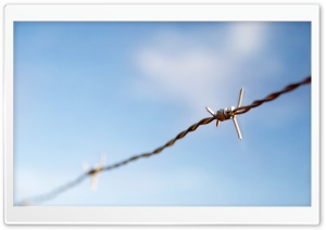 Barbed Wire HD Wide Wallpaper for 4K UHD Widescreen desktop & smartphone