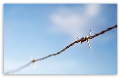 Barbed Wire HD wallpaper for Wide 16:10 5:3 Widescreen WHXGA WQXGA WUXGA WXGA WGA ; HD 16:9 High Definition WQHD QWXGA 1080p 900p 720p QHD nHD ; Standard 4:3 5:4 3:2 Fullscreen UXGA XGA SVGA QSXGA SXGA DVGA HVGA HQVGA devices ( Apple PowerBook G4 iPhone 4 3G 3GS iPod Touch ) ; Tablet 1:1 ; iPad 1/2/Mini ; Mobile 4:3 5:3 3:2 16:9 5:4 - UXGA XGA SVGA WGA DVGA HVGA HQVGA devices ( Apple PowerBook G4 iPhone 4 3G 3GS iPod Touch ) WQHD QWXGA 1080p 900p 720p QHD nHD QSXGA SXGA ; Dual 16:10 5:3 16:9 4:3 5:4 WHXGA WQXGA WUXGA WXGA WGA WQHD QWXGA 1080p 900p 720p QHD nHD UXGA XGA SVGA QSXGA SXGA ;