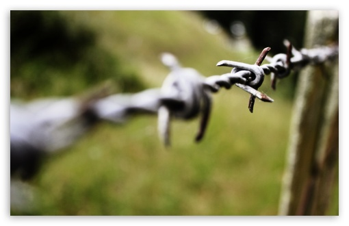 Barbed Wire Bokeh HD wallpaper for Wide 16:10 5:3 Widescreen WHXGA WQXGA WUXGA WXGA WGA ; HD 16:9 High Definition WQHD QWXGA 1080p 900p 720p QHD nHD ; Standard 4:3 5:4 3:2 Fullscreen UXGA XGA SVGA QSXGA SXGA DVGA HVGA HQVGA devices ( Apple PowerBook G4 iPhone 4 3G 3GS iPod Touch ) ; Tablet 1:1 ; iPad 1/2/Mini ; Mobile 4:3 5:3 3:2 16:9 5:4 - UXGA XGA SVGA WGA DVGA HVGA HQVGA devices ( Apple PowerBook G4 iPhone 4 3G 3GS iPod Touch ) WQHD QWXGA 1080p 900p 720p QHD nHD QSXGA SXGA ; Dual 16:10 5:3 16:9 4:3 5:4 WHXGA WQXGA WUXGA WXGA WGA WQHD QWXGA 1080p 900p 720p QHD nHD UXGA XGA SVGA QSXGA SXGA ;