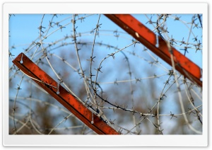 Barbed Wire Fence HD Wide Wallpaper for Widescreen