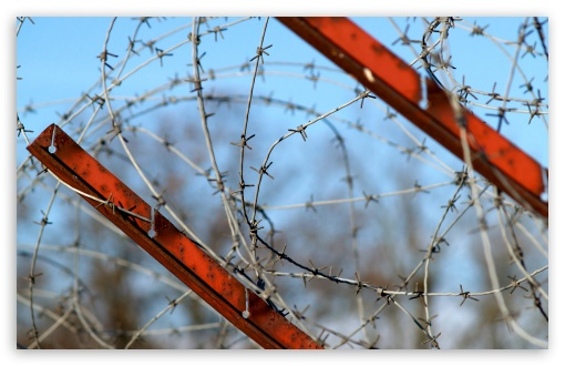 Barbed Wire Fence HD wallpaper for Wide 16:10 5:3 Widescreen WHXGA WQXGA WUXGA WXGA WGA ; HD 16:9 High Definition WQHD QWXGA 1080p 900p 720p QHD nHD ; Standard 4:3 5:4 3:2 Fullscreen UXGA XGA SVGA QSXGA SXGA DVGA HVGA HQVGA devices ( Apple PowerBook G4 iPhone 4 3G 3GS iPod Touch ) ; Tablet 1:1 ; iPad 1/2/Mini ; Mobile 4:3 5:3 3:2 16:9 5:4 - UXGA XGA SVGA WGA DVGA HVGA HQVGA devices ( Apple PowerBook G4 iPhone 4 3G 3GS iPod Touch ) WQHD QWXGA 1080p 900p 720p QHD nHD QSXGA SXGA ;