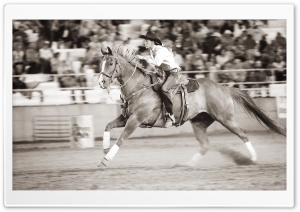 Barrel Racer HD Wide Wallpaper for Widescreen