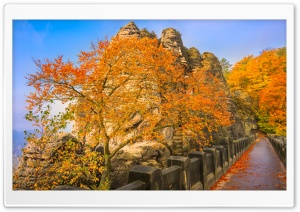 Bastei Bridge, Autumn HD Wide Wallpaper for 4K UHD Widescreen desktop & smartphone