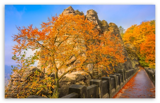 Bastei Bridge, Autumn ❤ 4K UHD Wallpaper for Wide 16:10 5:3 Widescreen WHXGA WQXGA WUXGA WXGA WGA ; UltraWide 21:9 24:10 ; 4K UHD 16:9 Ultra High Definition 2160p 1440p 1080p 900p 720p ; UHD 16:9 2160p 1440p 1080p 900p 720p ; Standard 4:3 5:4 3:2 Fullscreen UXGA XGA SVGA QSXGA SXGA DVGA HVGA HQVGA ( Apple PowerBook G4 iPhone 4 3G 3GS iPod Touch ) ; Smartphone 16:9 3:2 5:3 2160p 1440p 1080p 900p 720p DVGA HVGA HQVGA ( Apple PowerBook G4 iPhone 4 3G 3GS iPod Touch ) WGA ; Tablet 1:1 ; iPad 1/2/Mini ; Mobile 4:3 5:3 3:2 16:9 5:4 - UXGA XGA SVGA WGA DVGA HVGA HQVGA ( Apple PowerBook G4 iPhone 4 3G 3GS iPod Touch ) 2160p 1440p 1080p 900p 720p QSXGA SXGA ;