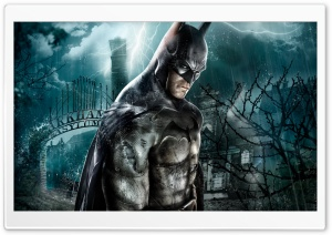 Batman Arkham Asylum Game HD Wide Wallpaper for Widescreen