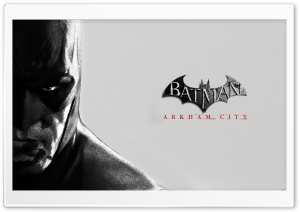 Batman Arkham City HD Wide Wallpaper for 4K UHD Widescreen desktop & smartphone