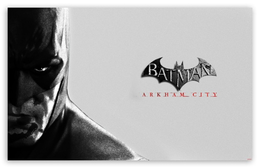 Batman Arkham City HD wallpaper for Wide 16:10 5:3 Widescreen WHXGA WQXGA WUXGA WXGA WGA ; HD 16:9 High Definition WQHD QWXGA 1080p 900p 720p QHD nHD ; Mobile 5:3 16:9 - WGA WQHD QWXGA 1080p 900p 720p QHD nHD ;