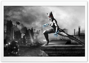 Batman Arkham City - Catwoman Night HD Wide Wallpaper for Widescreen