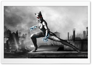 Batman Arkham City Armored Edition - Catwomen HD Wide Wallpaper for Widescreen