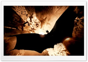 Batman Begins HD Wide Wallpaper for Widescreen