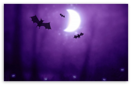 Bats   Halloween HD wallpaper for Wide 16:10 5:3 Widescreen WHXGA WQXGA WUXGA WXGA WGA ; HD 16:9 High Definition WQHD QWXGA 1080p 900p 720p QHD nHD ; Standard 4:3 5:4 3:2 Fullscreen UXGA XGA SVGA QSXGA SXGA DVGA HVGA HQVGA devices ( Apple PowerBook G4 iPhone 4 3G 3GS iPod Touch ) ; Tablet 1:1 ; iPad 1/2/Mini ; Mobile 4:3 5:3 3:2 16:9 5:4 - UXGA XGA SVGA WGA DVGA HVGA HQVGA devices ( Apple PowerBook G4 iPhone 4 3G 3GS iPod Touch ) WQHD QWXGA 1080p 900p 720p QHD nHD QSXGA SXGA ; Dual 16:10 5:3 16:9 4:3 5:4 WHXGA WQXGA WUXGA WXGA WGA WQHD QWXGA 1080p 900p 720p QHD nHD UXGA XGA SVGA QSXGA SXGA ;