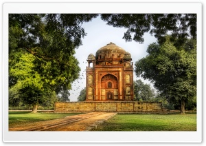 Bats In Belfry, Delhi HD Wide Wallpaper for Widescreen