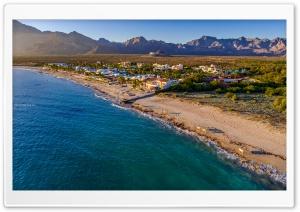 Beach Cows Ultra HD Wallpaper for 4K UHD Widescreen desktop, tablet & smartphone