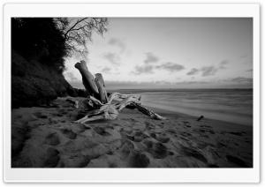 Beach In Black And White HD Wide Wallpaper for Widescreen