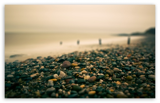 Beach Pebbles Autumn HD wallpaper for Wide 16:10 5:3 Widescreen WHXGA WQXGA WUXGA WXGA WGA ; HD 16:9 High Definition WQHD QWXGA 1080p 900p 720p QHD nHD ; UHD 16:9 WQHD QWXGA 1080p 900p 720p QHD nHD ; Standard 4:3 5:4 3:2 Fullscreen UXGA XGA SVGA QSXGA SXGA DVGA HVGA HQVGA devices ( Apple PowerBook G4 iPhone 4 3G 3GS iPod Touch ) ; Tablet 1:1 ; iPad 1/2/Mini ; Mobile 4:3 5:3 3:2 16:9 5:4 - UXGA XGA SVGA WGA DVGA HVGA HQVGA devices ( Apple PowerBook G4 iPhone 4 3G 3GS iPod Touch ) WQHD QWXGA 1080p 900p 720p QHD nHD QSXGA SXGA ; Dual 16:10 5:3 16:9 4:3 5:4 WHXGA WQXGA WUXGA WXGA WGA WQHD QWXGA 1080p 900p 720p QHD nHD UXGA XGA SVGA QSXGA SXGA ;