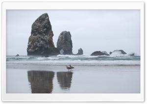 Beach Rocks Ultra HD Wallpaper for 4K UHD Widescreen desktop, tablet & smartphone