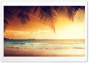 Beach Scene Sunset HD Wide Wallpaper for 4K UHD Widescreen desktop & smartphone