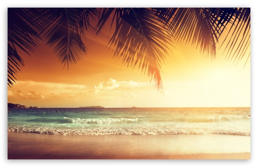 Beach Scene Sunset 2 ❤ 4K UHD Wallpaper for Wide 16:10 5:3 Widescreen WHXGA WQXGA WUXGA WXGA WGA ; Standard 4:3 5:4 3:2 Fullscreen UXGA XGA SVGA QSXGA SXGA DVGA HVGA HQVGA ( Apple PowerBook G4 iPhone 4 3G 3GS iPod Touch ) ; iPad 1/2/Mini ; Mobile 4:3 5:3 3:2 5:4 - UXGA XGA SVGA WGA DVGA HVGA HQVGA ( Apple PowerBook G4 iPhone 4 3G 3GS iPod Touch ) QSXGA SXGA ;