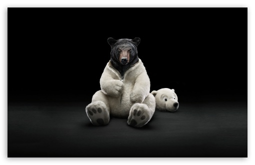 Bear HD wallpaper for Standard 4:3 5:4 Fullscreen UXGA XGA SVGA QSXGA SXGA ; Wide 16:10 5:3 Widescreen WHXGA WQXGA WUXGA WXGA WGA ; HD 16:9 High Definition WQHD QWXGA 1080p 900p 720p QHD nHD ; Other 3:2 DVGA HVGA HQVGA devices ( Apple PowerBook G4 iPhone 4 3G 3GS iPod Touch ) ; Mobile VGA WVGA iPhone iPad PSP Phone - VGA QVGA Smartphone ( PocketPC GPS iPod Zune BlackBerry HTC Samsung LG Nokia Eten Asus ) WVGA WQVGA Smartphone ( HTC Samsung Sony Ericsson LG Vertu MIO ) HVGA Smartphone ( Apple iPhone iPod BlackBerry HTC Samsung Nokia ) Sony PSP Zune HD Zen ; Tablet 2 ;