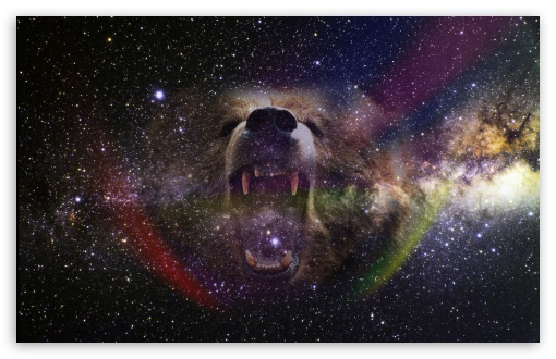 Bear Into the Space HD wallpaper for Wide 16:10 5:3 Widescreen WHXGA WQXGA WUXGA WXGA WGA ; HD 16:9 High Definition WQHD QWXGA 1080p 900p 720p QHD nHD ; UHD 16:9 WQHD QWXGA 1080p 900p 720p QHD nHD ; Standard 4:3 5:4 3:2 Fullscreen UXGA XGA SVGA QSXGA SXGA DVGA HVGA HQVGA devices ( Apple PowerBook G4 iPhone 4 3G 3GS iPod Touch ) ; Tablet 1:1 ; iPad 1/2/Mini ; Mobile 4:3 5:3 3:2 16:9 5:4 - UXGA XGA SVGA WGA DVGA HVGA HQVGA devices ( Apple PowerBook G4 iPhone 4 3G 3GS iPod Touch ) WQHD QWXGA 1080p 900p 720p QHD nHD QSXGA SXGA ;