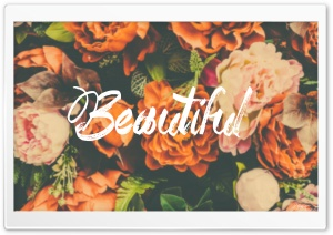 Beautiful Ultra HD Wallpaper for 4K UHD Widescreen desktop, tablet & smartphone