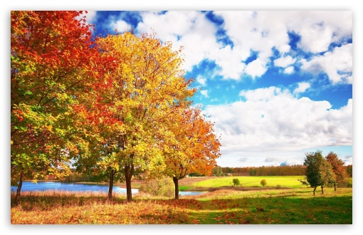 Beautiful Autumn Day ❤ 4K UHD Wallpaper for Wide 16:10 5:3 Widescreen WHXGA WQXGA WUXGA WXGA WGA ; 4K UHD 16:9 Ultra High Definition 2160p 1440p 1080p 900p 720p ; Standard 4:3 5:4 3:2 Fullscreen UXGA XGA SVGA QSXGA SXGA DVGA HVGA HQVGA ( Apple PowerBook G4 iPhone 4 3G 3GS iPod Touch ) ; Tablet 1:1 ; iPad 1/2/Mini ; Mobile 4:3 5:3 3:2 16:9 5:4 - UXGA XGA SVGA WGA DVGA HVGA HQVGA ( Apple PowerBook G4 iPhone 4 3G 3GS iPod Touch ) 2160p 1440p 1080p 900p 720p QSXGA SXGA ; Dual 16:10 5:3 16:9 4:3 5:4 WHXGA WQXGA WUXGA WXGA WGA 2160p 1440p 1080p 900p 720p UXGA XGA SVGA QSXGA SXGA ;