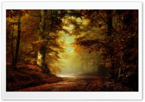 Beautiful Autumn Landscape 4 HD Wide Wallpaper for Widescreen