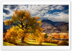 Beautiful Autumn Scenery Colorado HD Wide Wallpaper for Widescreen